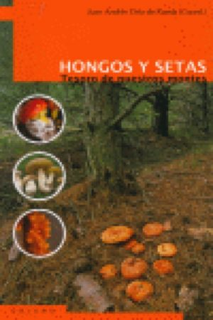 HONGOS Y SETAS